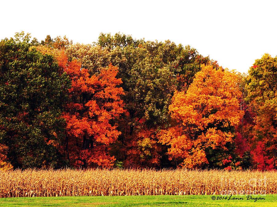 Autumn Photograph - Autumn On The Farn by EGiclee Digital Prints