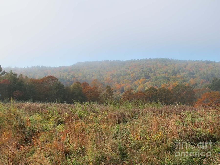 Autumn Photograph - Autumn Pasture by Linda Marcille