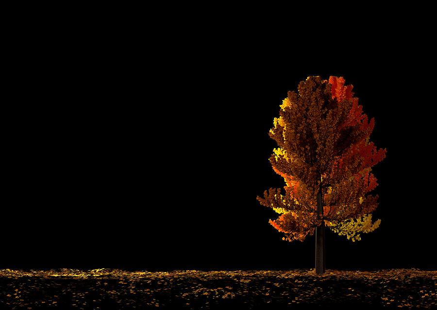 Tree Digital Art - Autumn by Paul McManus