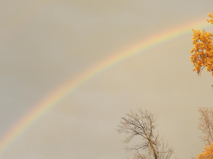 Rainbow Photograph - Autumn Rainbow by Cim Paddock