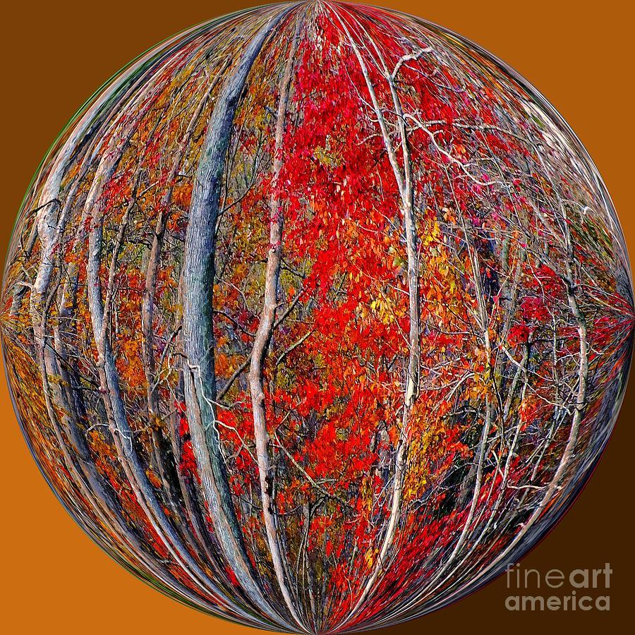 Autumn Leaves Photograph - Autumn Reds by Scott Cameron