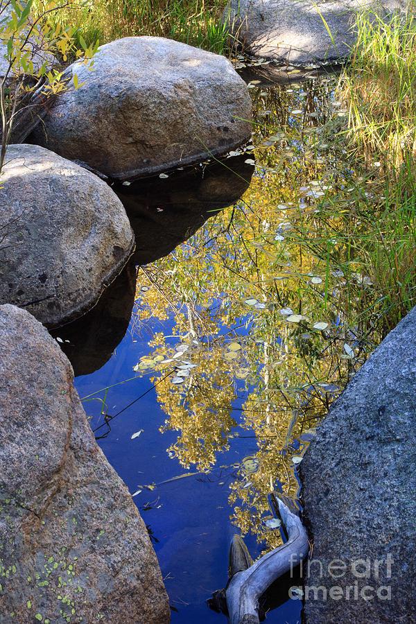 Autumn Reflection Photograph