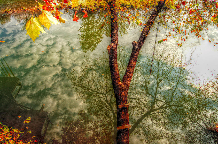 Lautumn Photograph - Autumn Reflection  by Peggy Franz