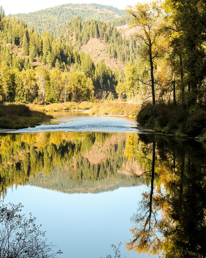 Autumn Photograph - Autumn Reflections 5 by Curtis Stein