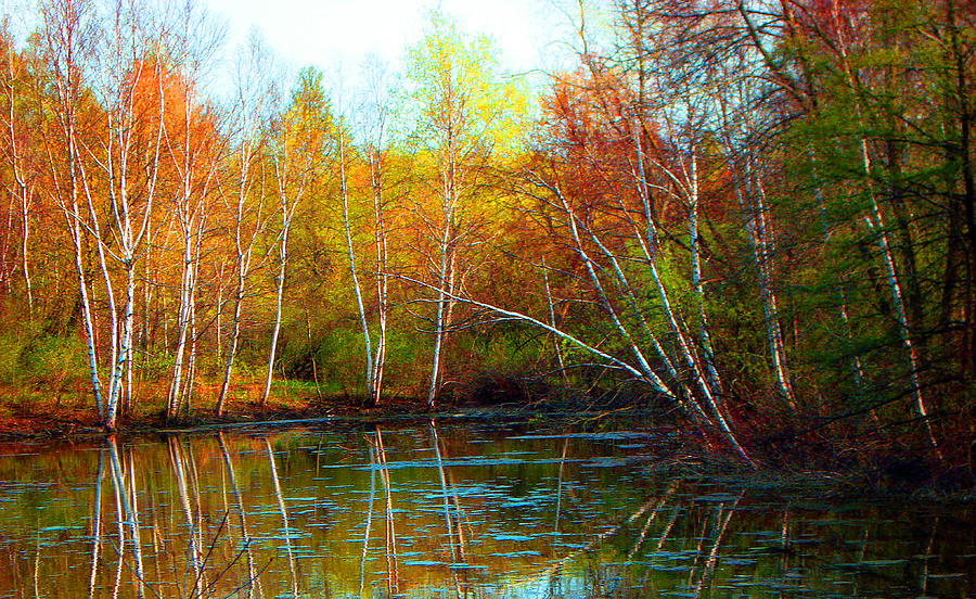 Fall Photograph - Autumn Reflections by James Hammen