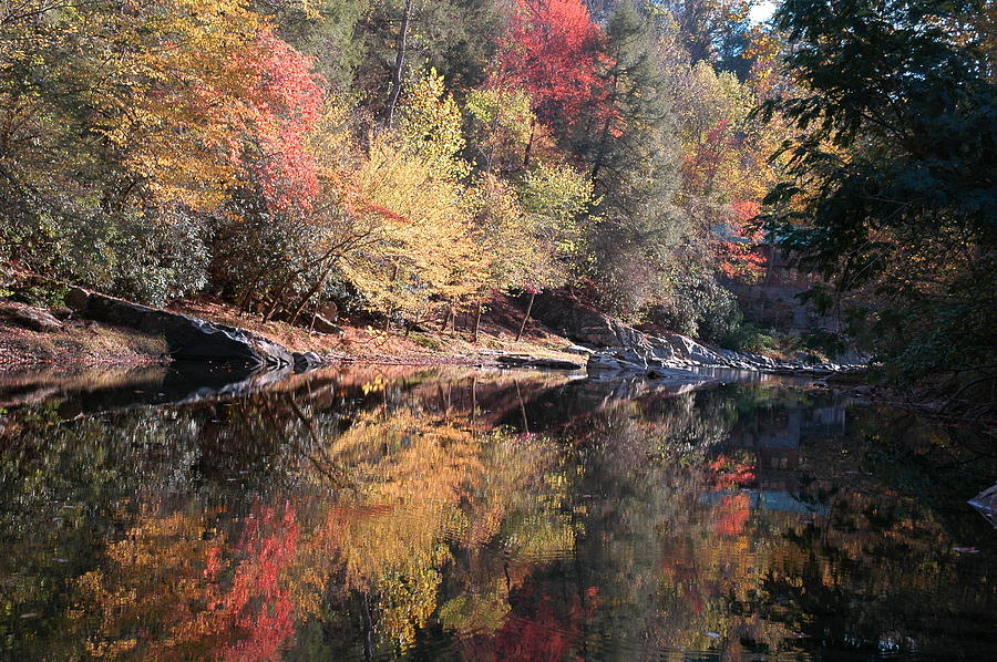 Autumn Reflections Photograph - Autumn Reflections by John Saunders