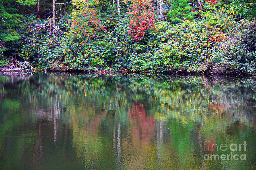 Landscape Photograph - Autumn Reflections by Melissa Petrey