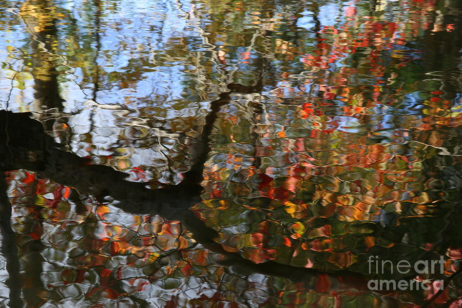 Reflection Photograph - Autumn Reflections  by Neal Eslinger
