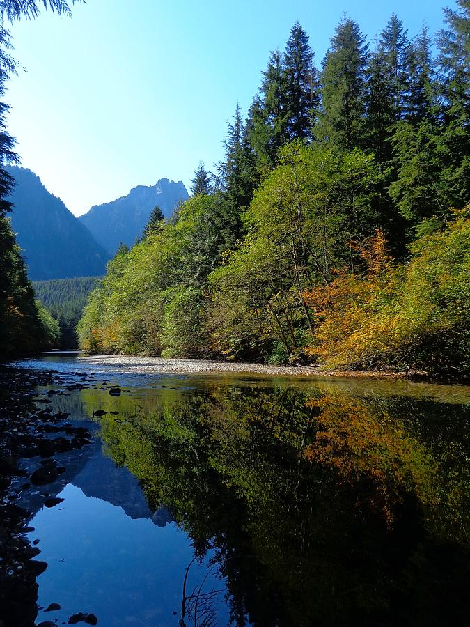 Autumn Returns - Reflected Mountain Stream Photograph