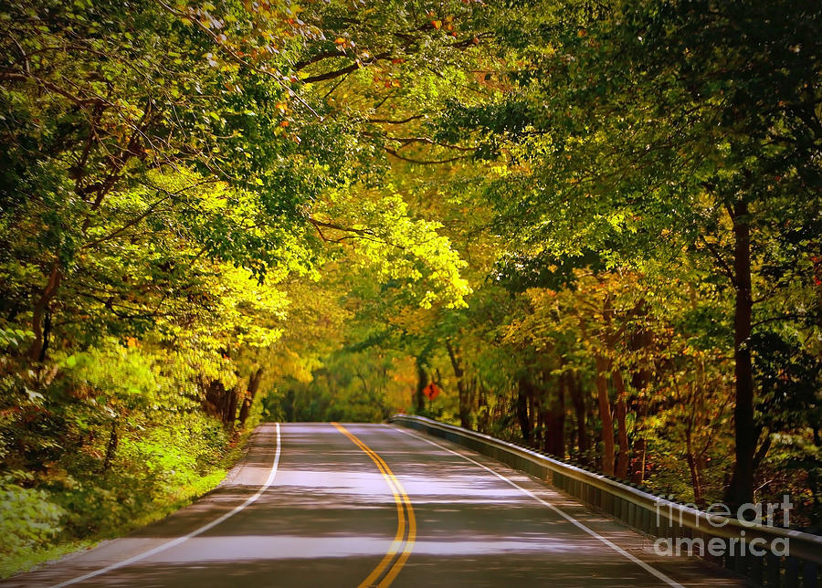 Autumn Road Photograph - Autumn Road by Carol Groenen
