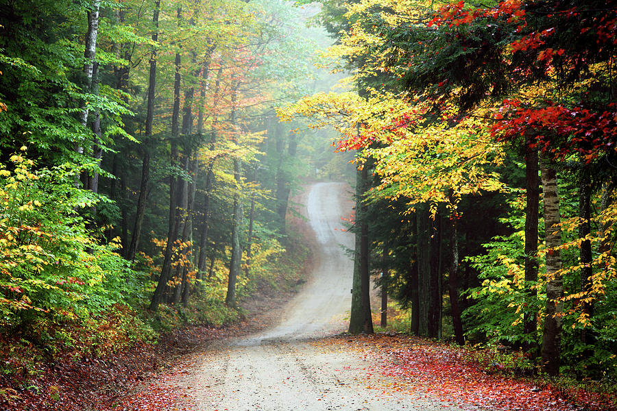 Autumn Road In Rural New Hampshire Photograph by Denistangneyjr