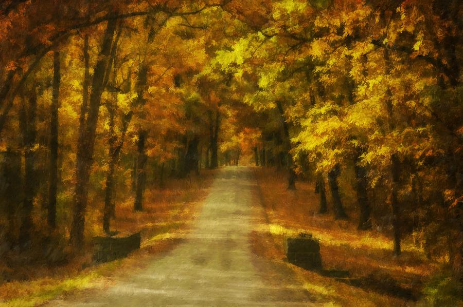 Autumn Photograph - Autumn Road by Mick Burkey