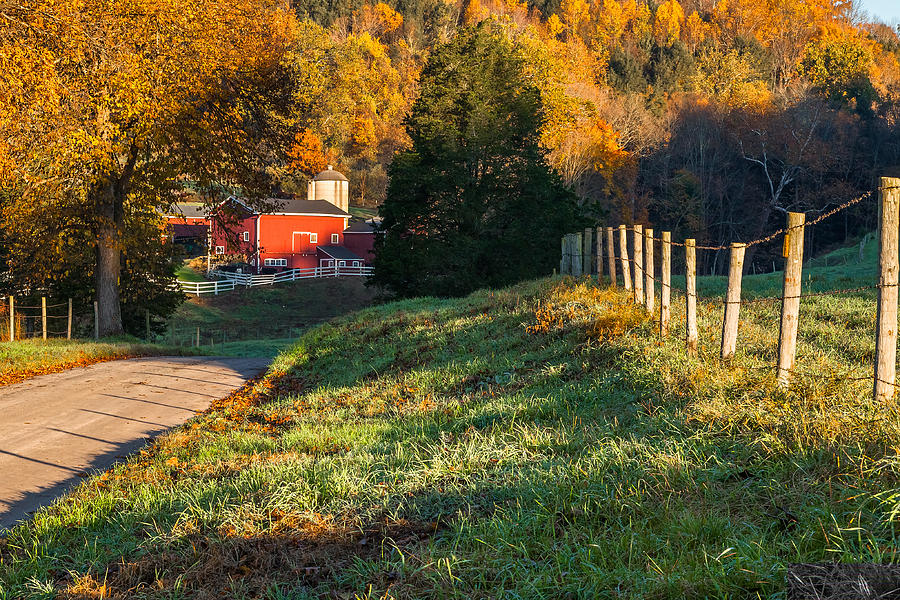 Bucolic Photograph - Autumn Road Morning by Bill Wakeley