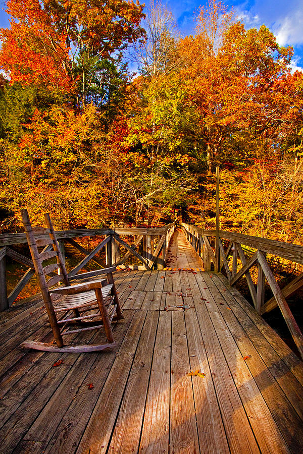 Autumn Rocking On Wooden Bridge Landscape Print Photograph