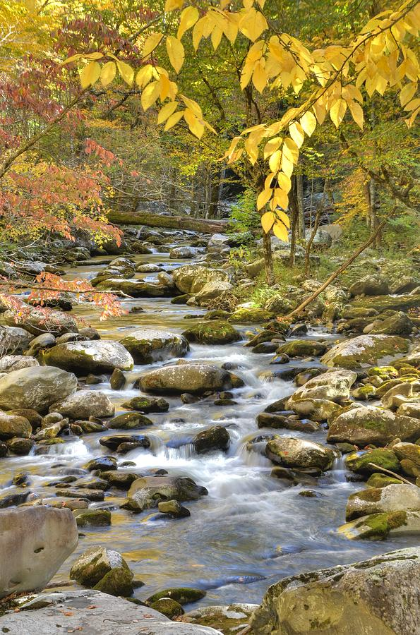 Tremont Photograph - Autumn Serenity by Mary Anne Baker