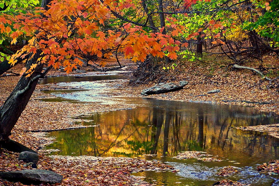 Autumn Photograph - Autumn Serenity by Frozen in Time Fine Art Photography
