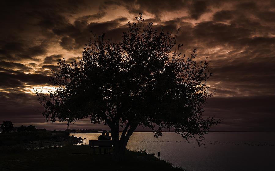 Sunset Photograph - Autumn Setting by Blanca Braun