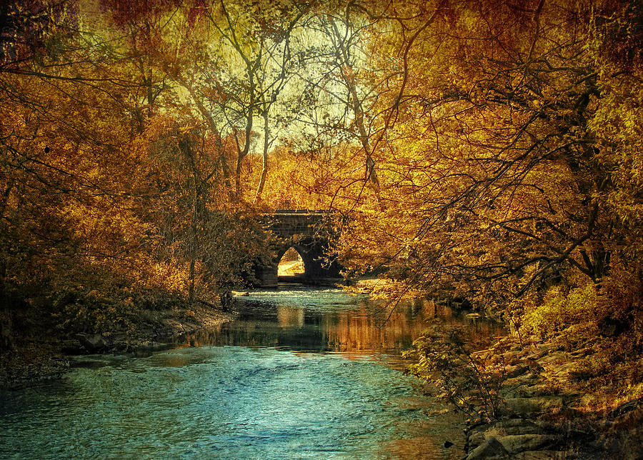 Autumn Photograph - Autumn Shimmer by Jessica Jenney