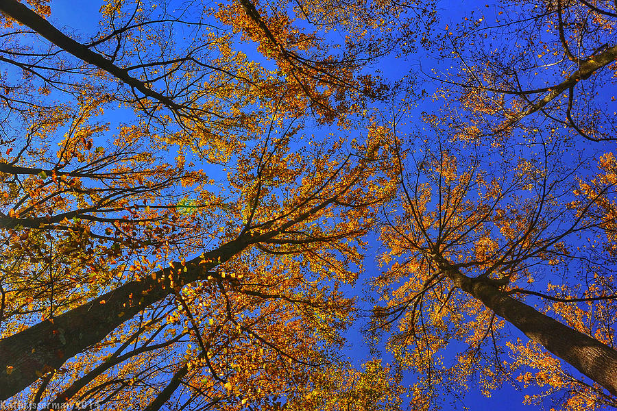 Brighton Dam Photograph - Autumn Sky by Kathi Isserman