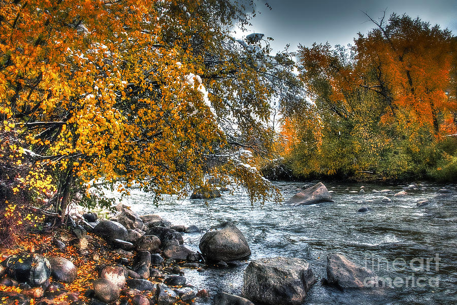 Colorado Photograph - Autumn Snow by Bob Hislop