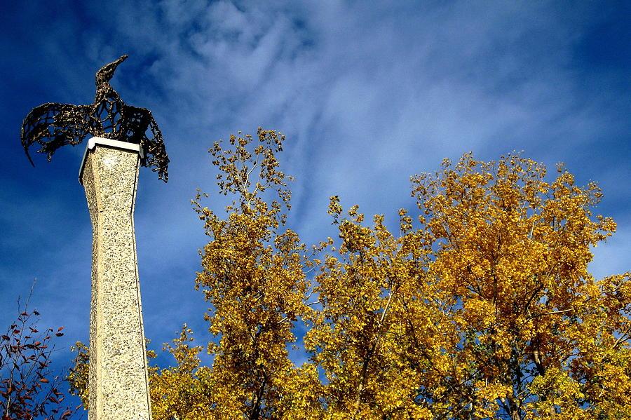 Bird Photograph - Autumn Step by Maude Demers
