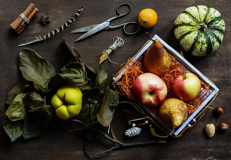 Autumn Still Life Photograph by Aniko Hobel