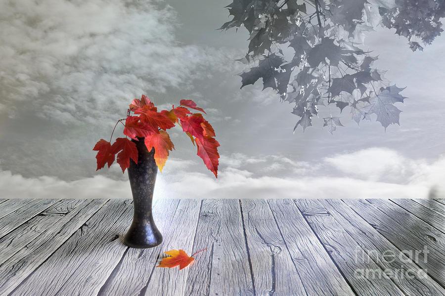Artist Photograph - Autumn Still Life by Veikko Suikkanen