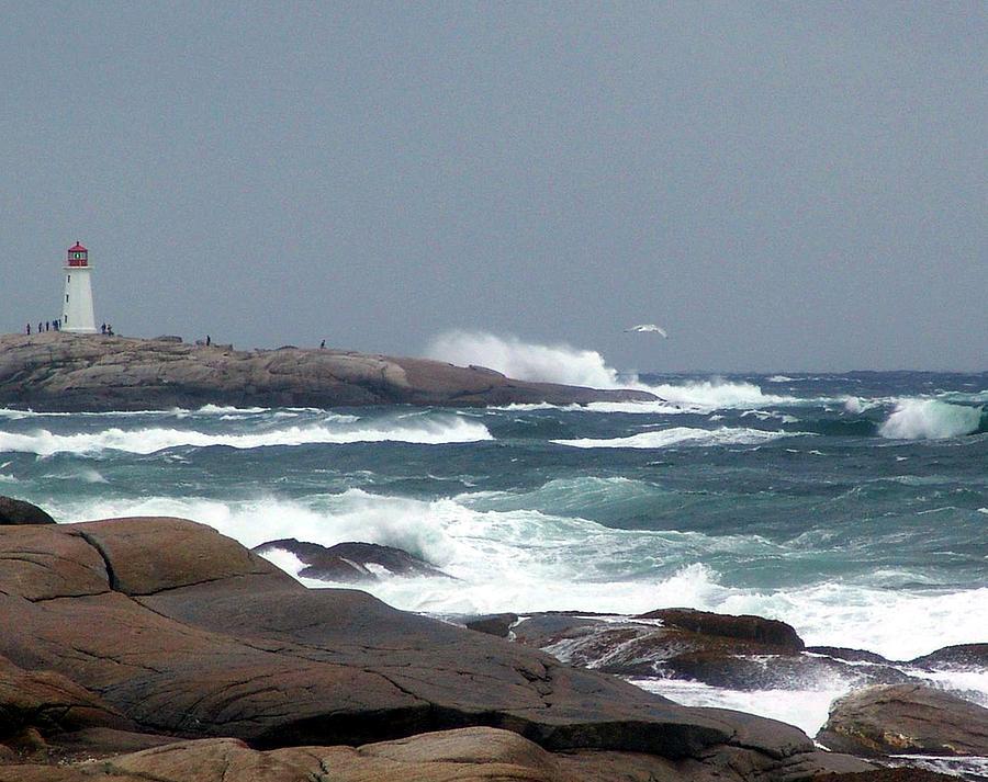 Jann Mixed Media - Autumn Storm At Peggys Cove by Janet Ashworth