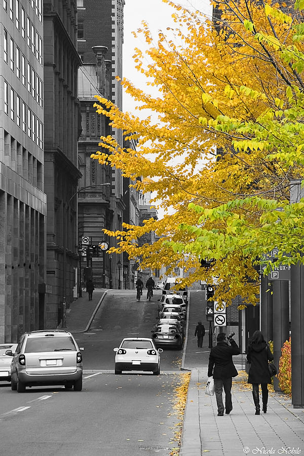 Old Montreal Photograph - Autumn Stroll by Nicola Nobile