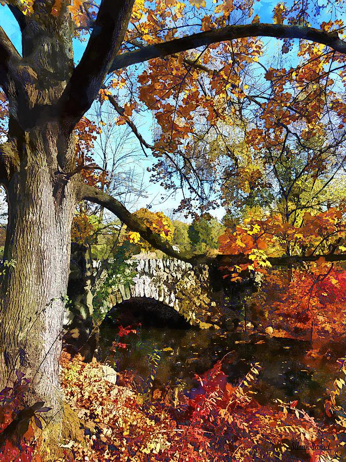 Autumn Photograph - Autumn Tree By Small Stone Bridge by Susan Savad