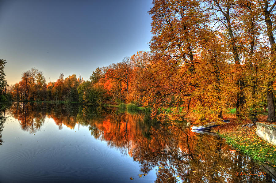 Autumn Trees over a Pond in Arkadia Park in Poland