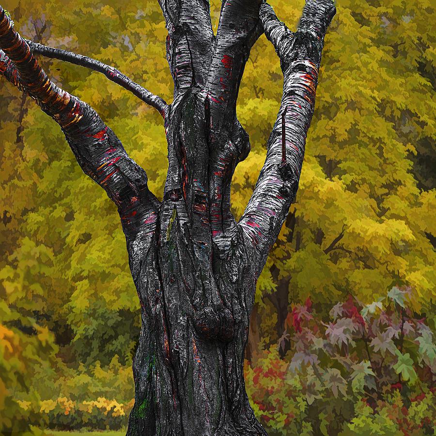 Autumn Photograph - Autumn Trees3 by Vladimir Kholostykh