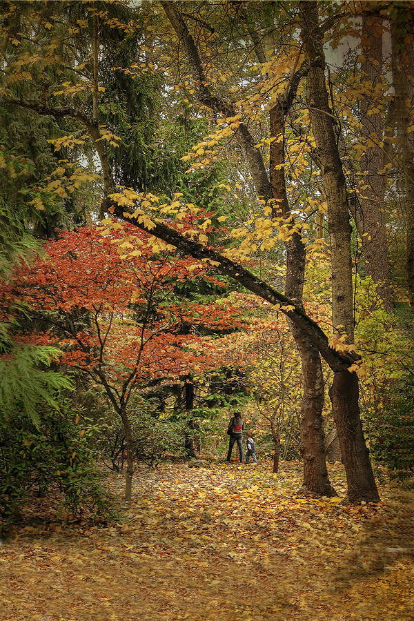 Autumn Photograph - Autumn Walk by Diane Schuster