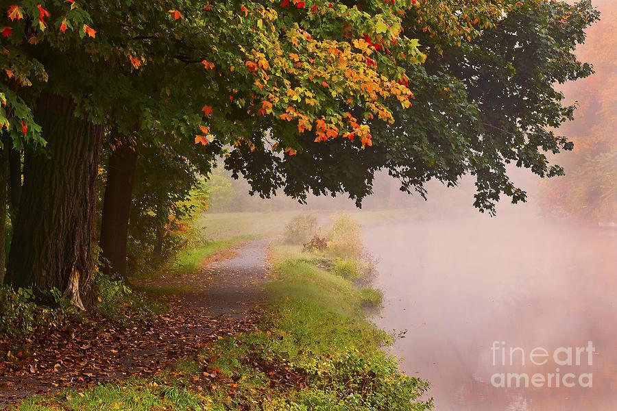 Autumn Walk Photograph by Julie Palyswiat