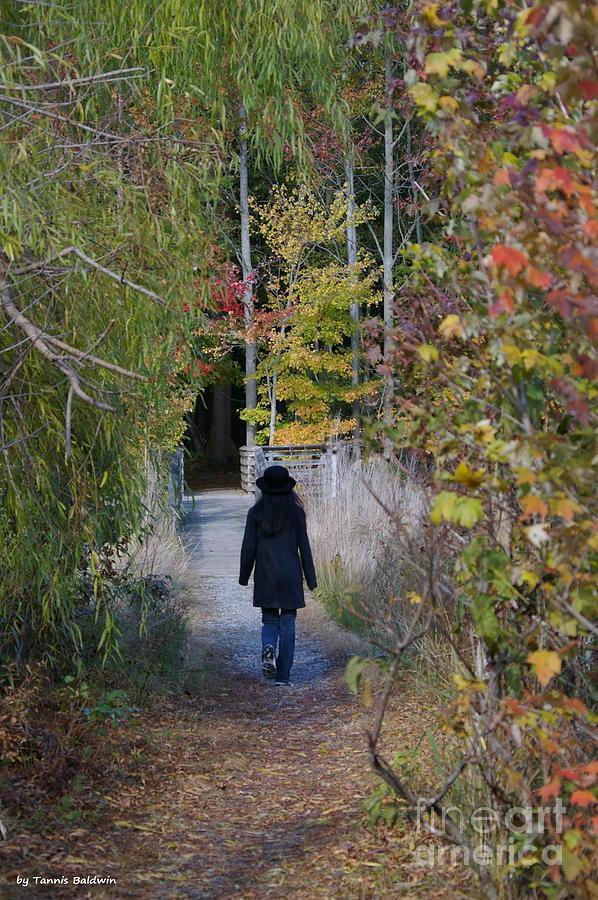 Landscape Photograph - Autumn Walk by Tannis  Baldwin