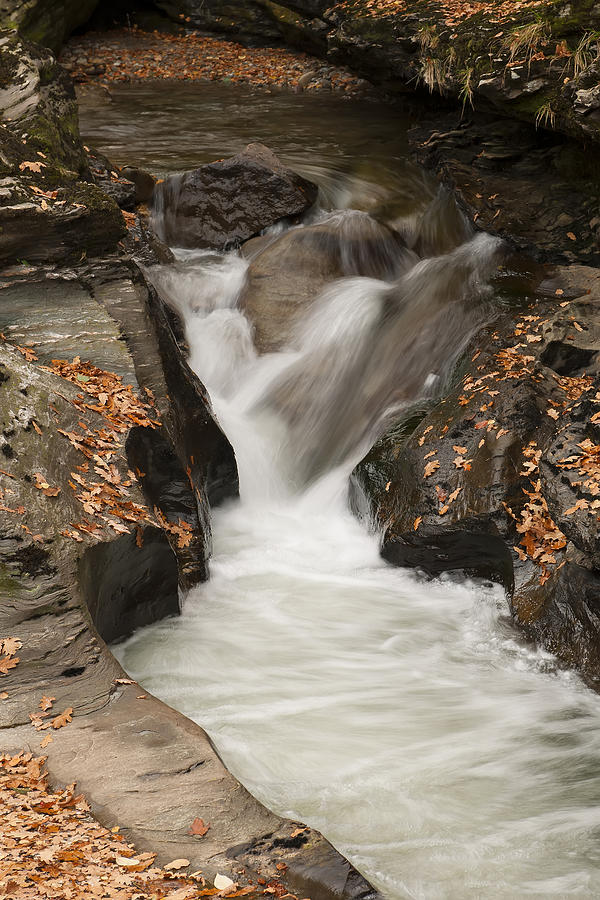 Autumn water by Gouzel -