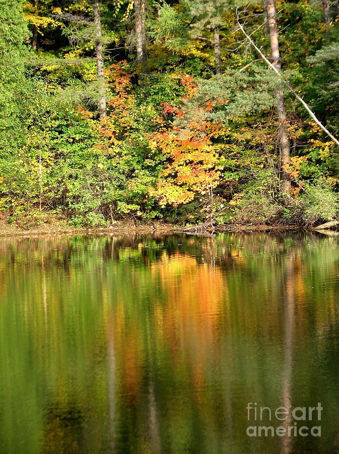 Autumn Photograph - Autumn Watercolor Reflections by Rose Santuci-Sofranko