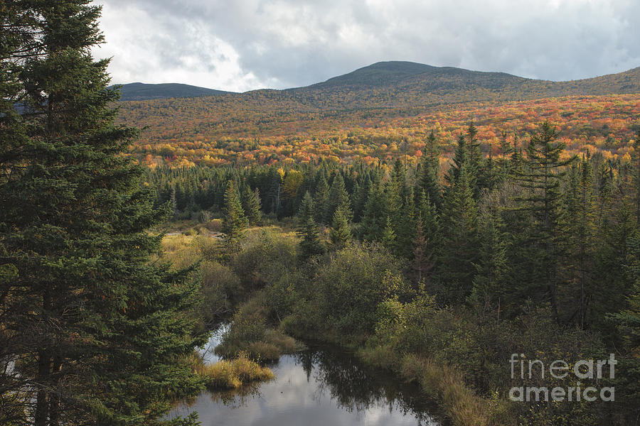 Fall Photograph - Autumn - White Mountains New Hampshire by Erin Paul Donovan