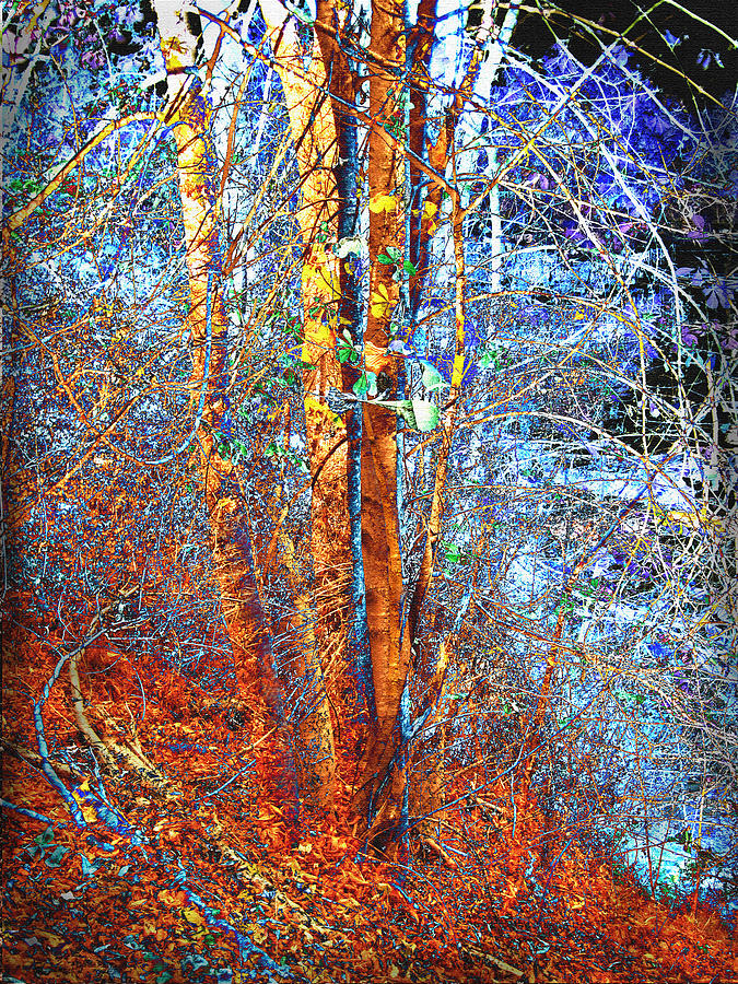Abstract Landscape Mixed Media - Autumn Woods by Ann Powell