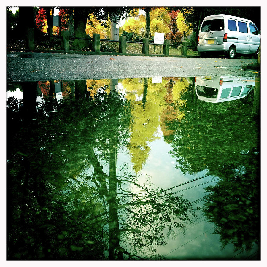 Autumnal Leaves Reflected In A Puddle Photograph by Photographer, Loves Art, Lives In Kyoto
