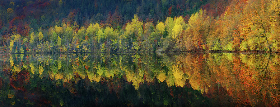 Autumn Photograph - Autumnal Silence by Burger Jochen