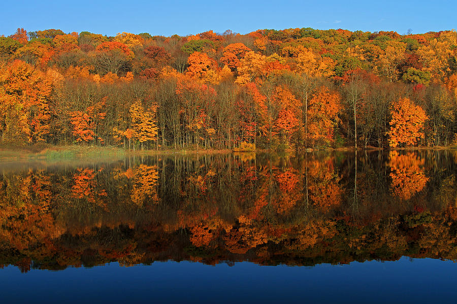 Reflection Photograph - Autumns Colorful Reflection by Karol Livote