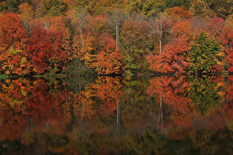 Autumn Photograph - Autumns Design by Karol Livote