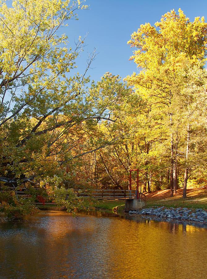 Autumn Photograph - Autumns Golden Pond by Kim Hojnacki