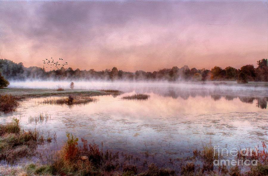 Bernheim Forest Photograph - Autumns Light by Darren Fisher