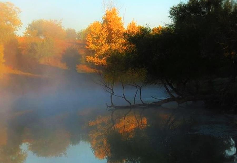 Autumn Photograph - Autumns Mist by Renee Michelle Wenker