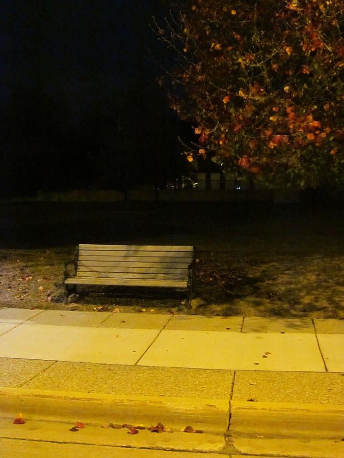 Bench Photograph - Autumns Nocturnal Solace by Guy Ricketts