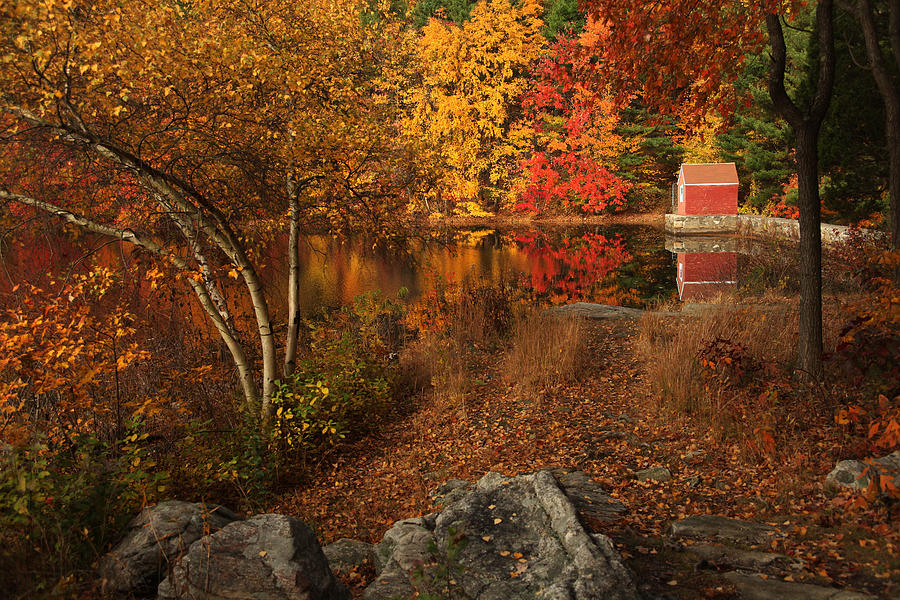 Autumn Photograph - Autumns Path by Karol Livote