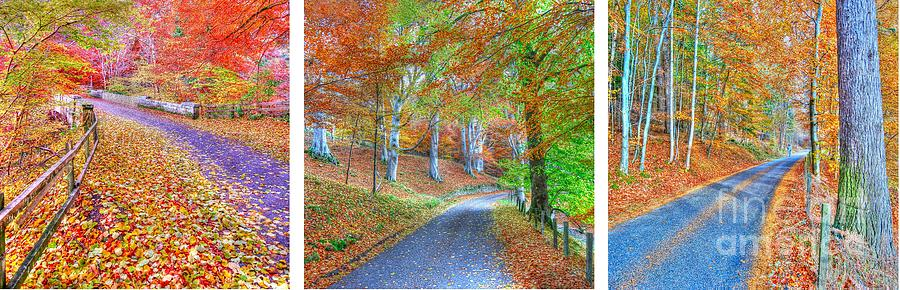 Colourful Photograph - Autumns Way by John Kelly