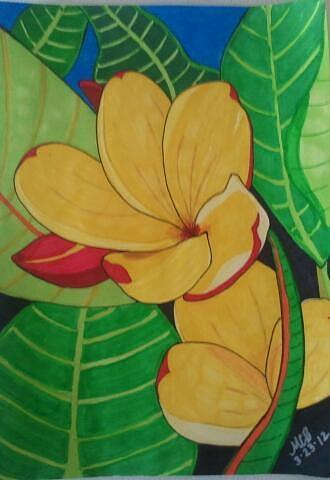 Yellow Flower Drawing - Awake by Marcia Brownridge